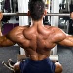 Comment apprendre la musculation et le fitness ?