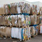 Le carton, pourquoi est-il devenu un atout écologique?