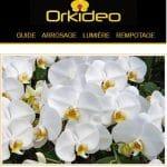 Quel est le meilleur guide-conseil pour orchidée?
