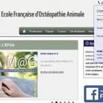 Quelle est la meilleure école d'ostéopathie animale?