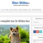 Quelles sont les principales caractéristiques du Shiba Inu ?