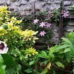 Parlons de Garden staging