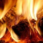 TEAM SEB, votre fournisseur de bois de chauffage à Montigny-le-Franc