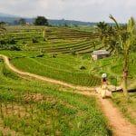 Les meilleures destinations à découvrir en Asie