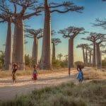 Qand s'évader dans une nature d'exception en visitant Madagascar?