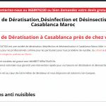 Quelle est la meilleure société de dératisation au Maroc ?