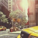 Un aperçu sur les métiers des chauffeurs de taxi?