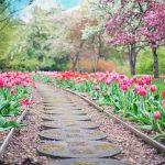 Quel est le meilleur guide de référence sur le jardinage?